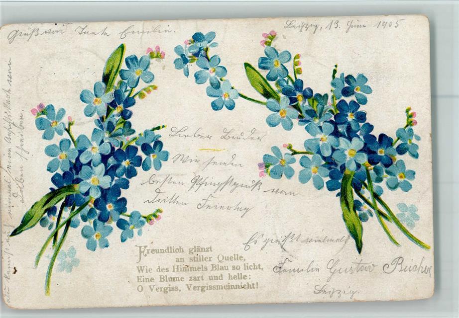 Lithographie Vergissmeinnicht Gedicht Ansichtskarten Center