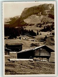 Alte Postkarte Hotel Waldeck Flims-waldhaus