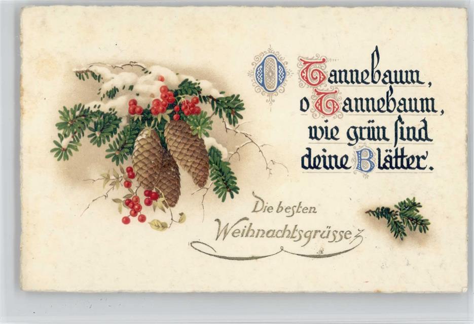 Weihnachten Schöne Tannenzapfen mit Beeren 1935 AK Kalligrafie ...