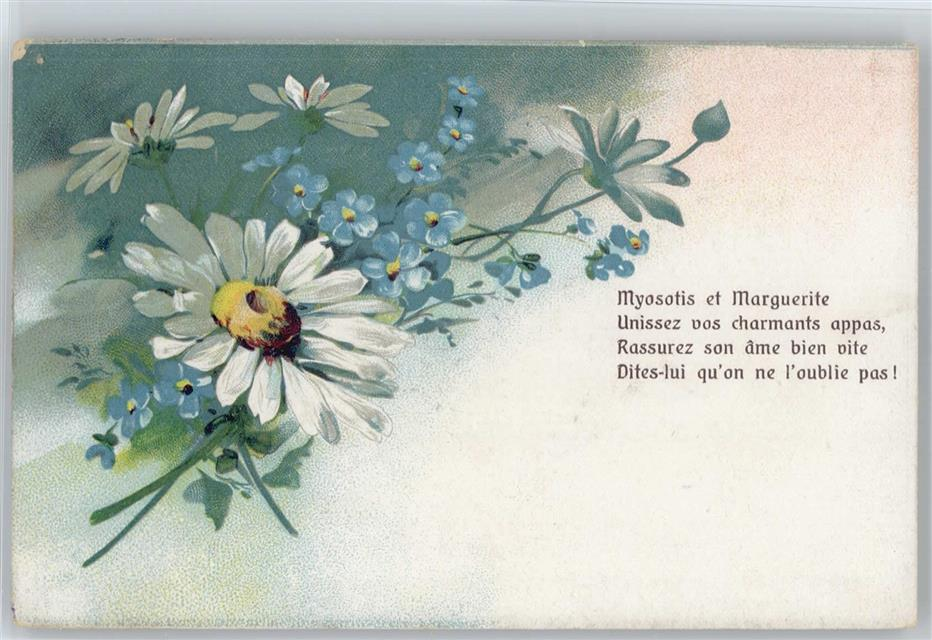 Prägedruck Vergissmeinnicht Serie 56 Nr 2 Margeriten Litho