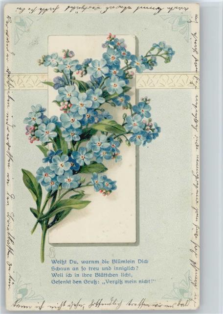 1911 Prägedruck Vergissmeinnicht Gedicht Und Blumenstrauß