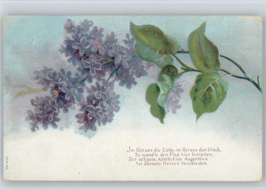 Gedicht Und Vergissmeinnicht Ansichtskarten Center Onlineshop