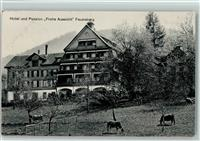 Feusisberg 1914 Hotel Pension Frohe Aussicht