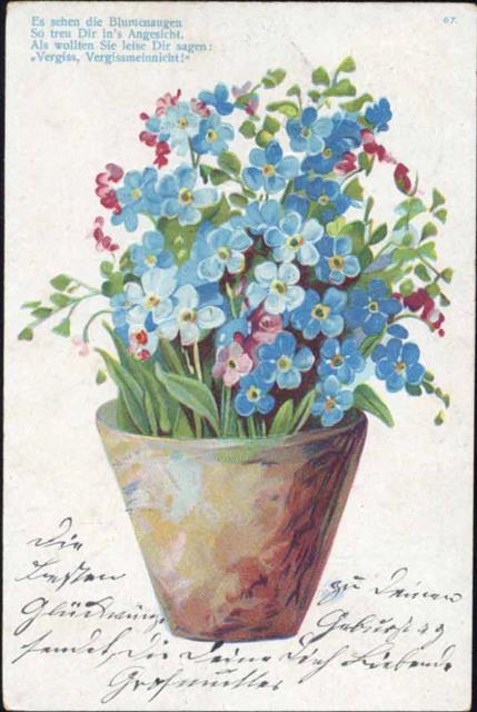Spruch Ak Blumen Vergissmeinnicht Preissenkung
