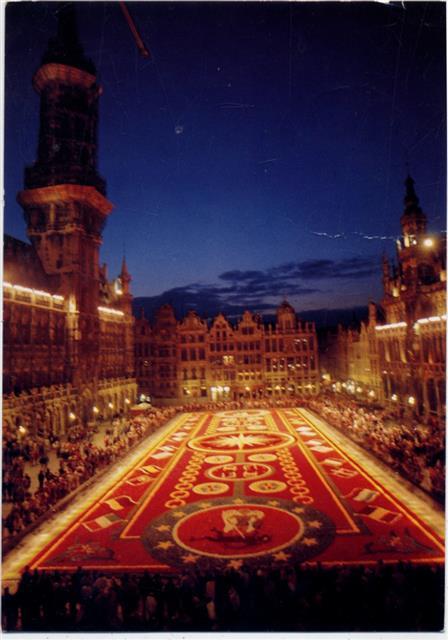Brüssel, Marktplatz, Blumen Teppich, Belgien,Thill