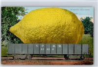 I´m sending you a lemon, Obst Zitrone  Surrealismus