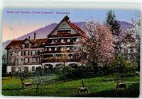 Feusisberg 1917 Hotel frohe aussicht